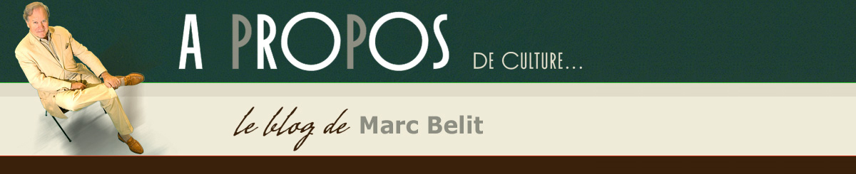 Le blog de Marc Belit